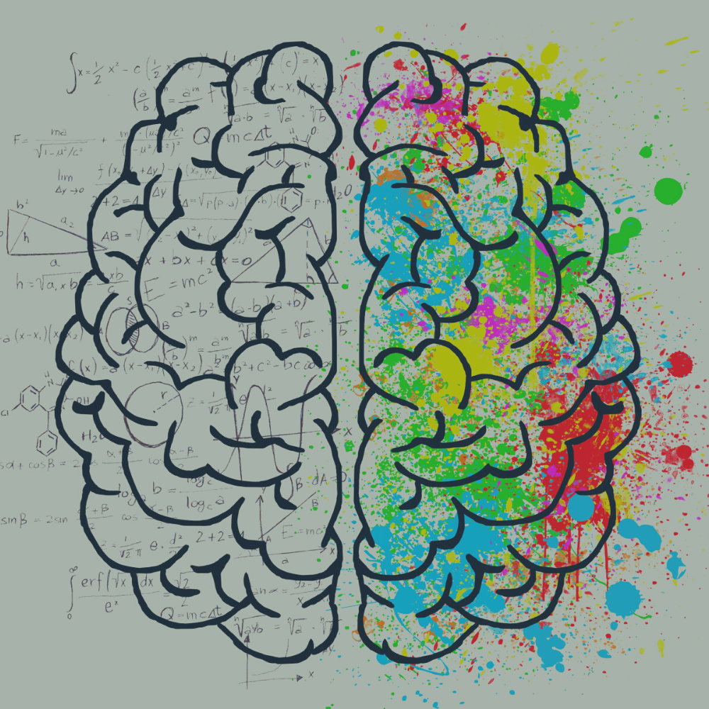Episode #219 – A Tour of the Brain (And How to Use It)